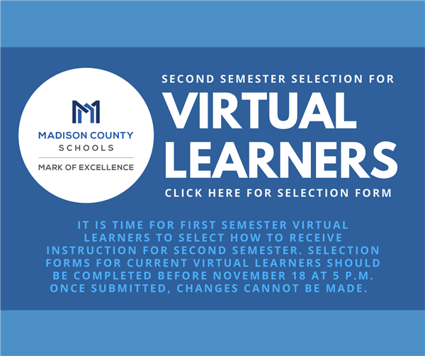 virtual learners