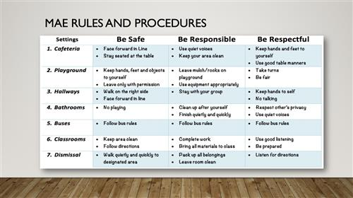 MAE Rules and Procedures