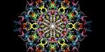 silk_symmetry