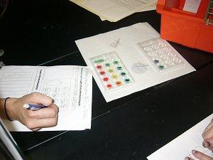 Qual Lab