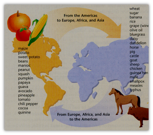 essay visit the following web pages the columbian exchange by john ...